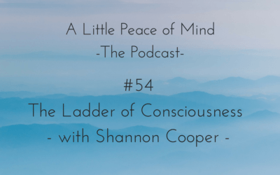 Episode 54 – The Ladder of Consciousness with Shannon Cooper