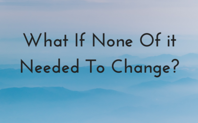 What If None Of it Needed To Change?