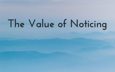 The Value of Noticing